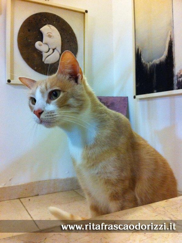 gatti_e_dipinti_arte