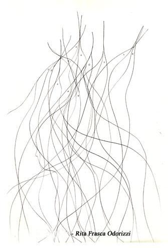 diesegni_illustrazioni_uccelli_ofri_serie_alfabeto_dell_intero_2005_uccelli_8