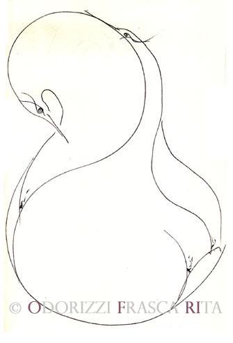 diesegni_illustrazioni_uccelli_ofri_serie_alfabeto_dell_intero_ofri_2005_uccellli