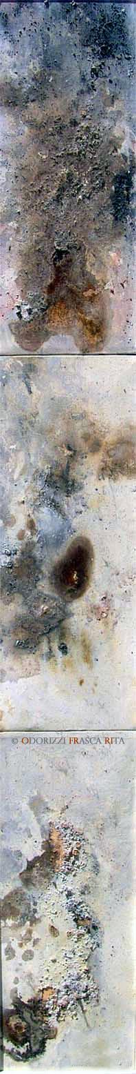 dipinto_a_olio_ofri_serie_sostanza_di_universo_humus_di_pianeta