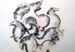 disegno_carboncino_cavalli