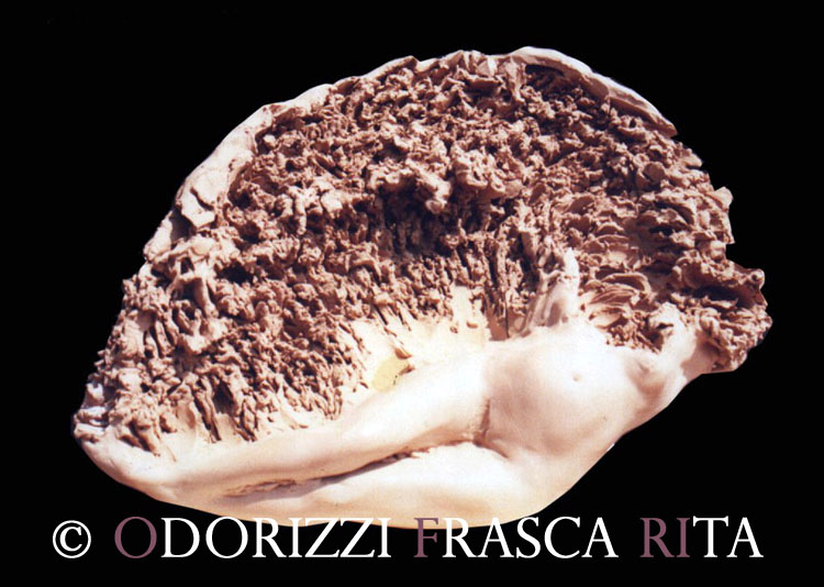 scultura_contemporanea_ofri_serie_radici_titolo_quattro_stagioni_estate_1990